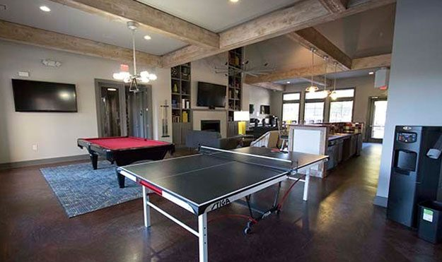 Ping Pong & Billiards Table